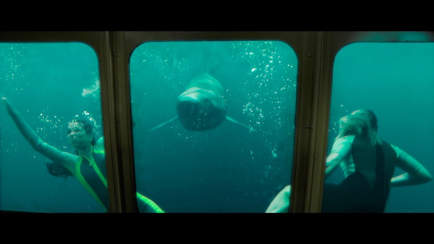 47 meters down  uncaged trailer 2